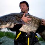 fischer-franz